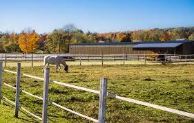 horse barn 3.jpeg